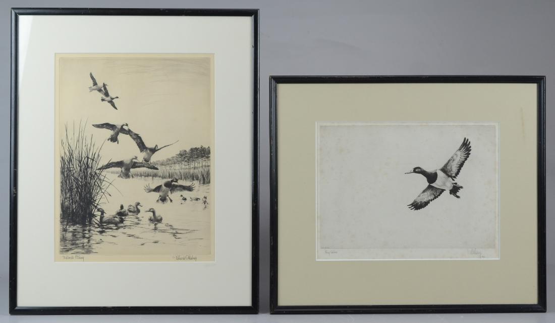 Richard Bishop, 2 etchings of ducks