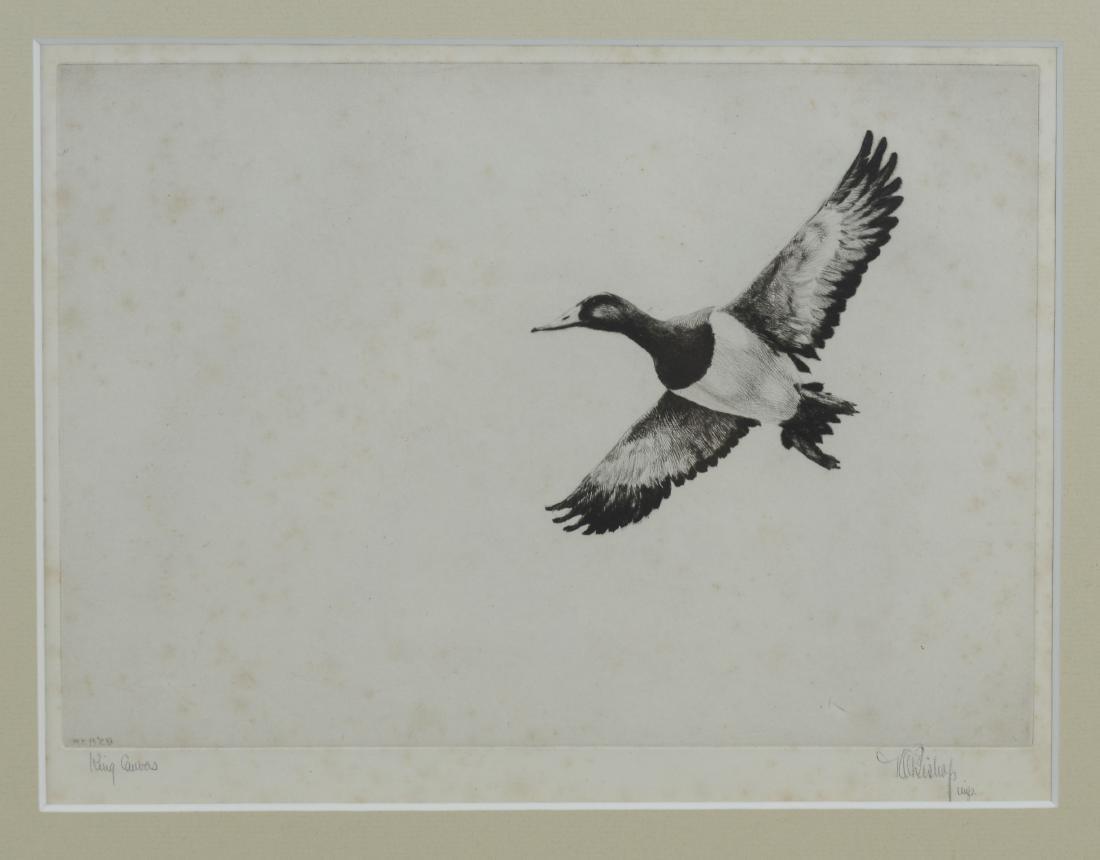 Richard Bishop, 2 etchings of ducks - 2