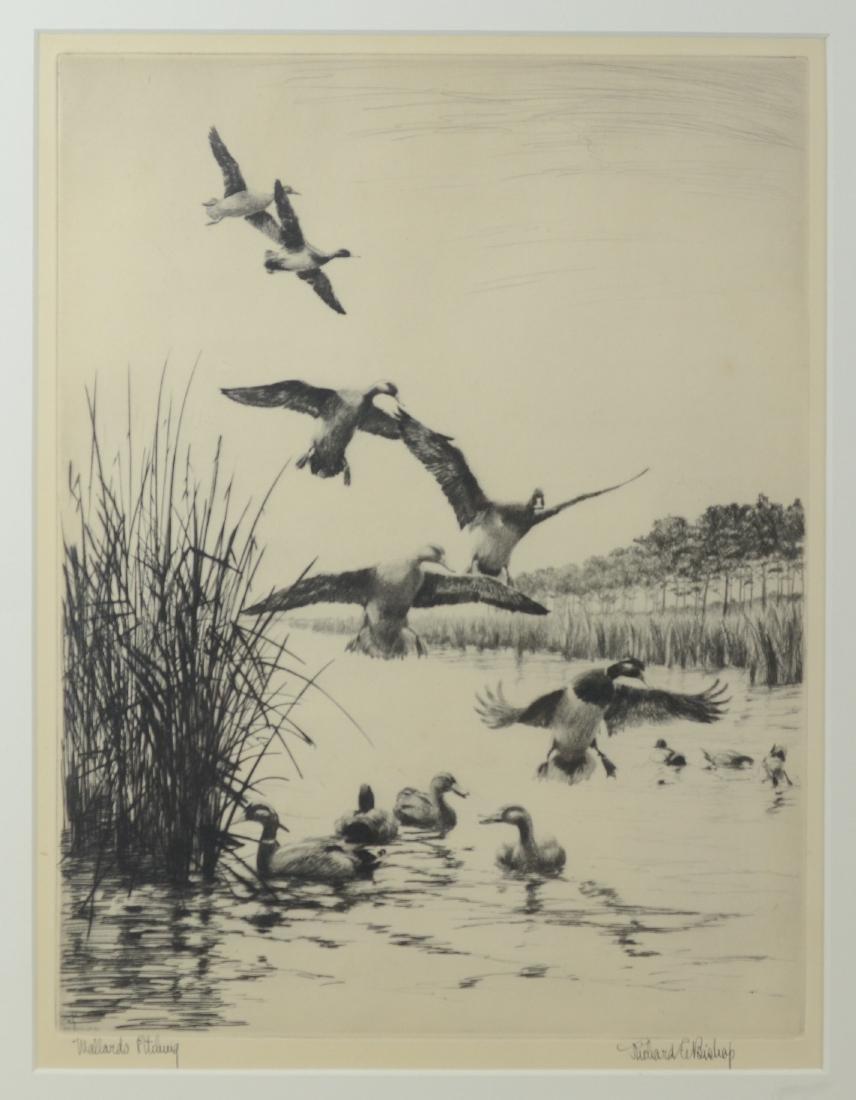 Richard Bishop, 2 etchings of ducks - 3