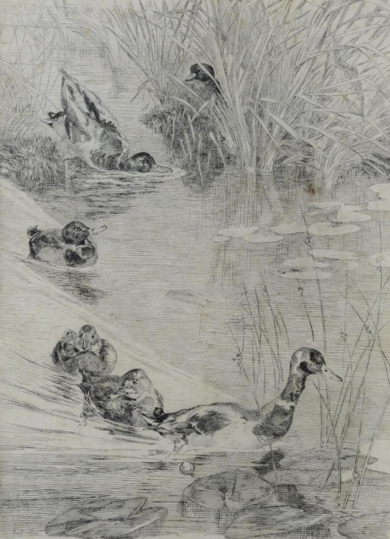 """Felix Bracquemond, etching """"Ebats des Canards"""""""