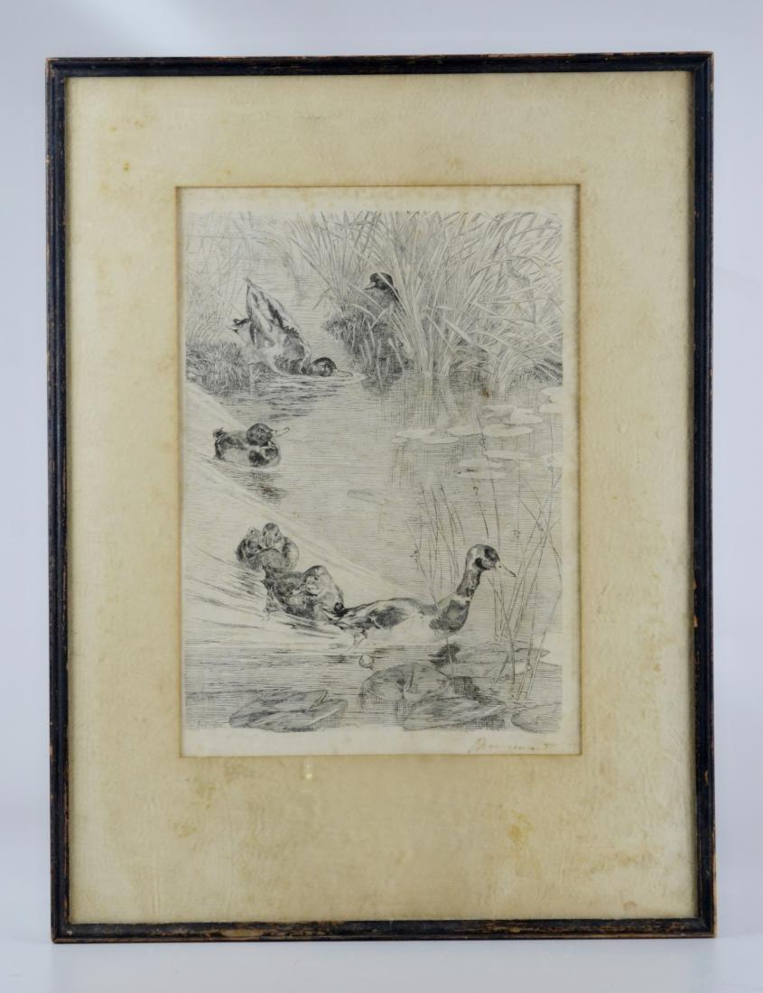 """Felix Bracquemond, etching """"Ebats des Canards"""" - 2"""