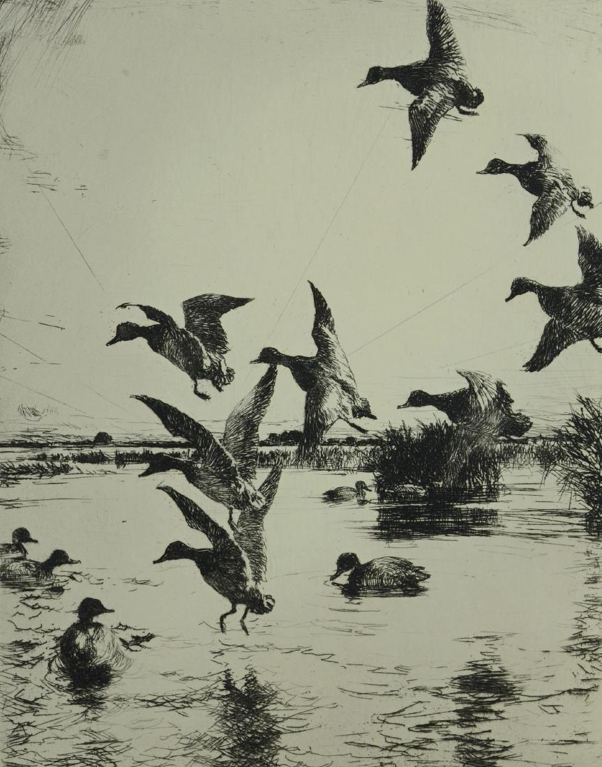 Frank Weston Benson (American, 1862-1951), etching on