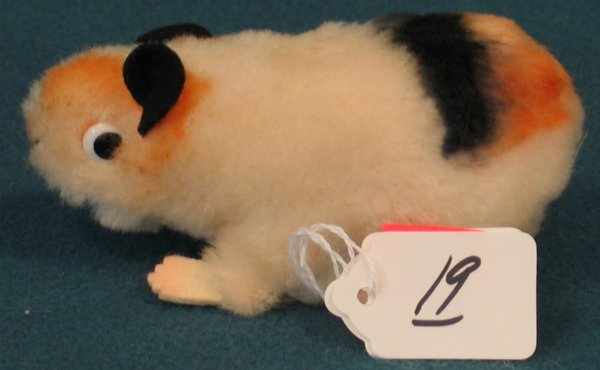 """19: 5"""" Guinea Pig, """"Swinny"""", no button"""