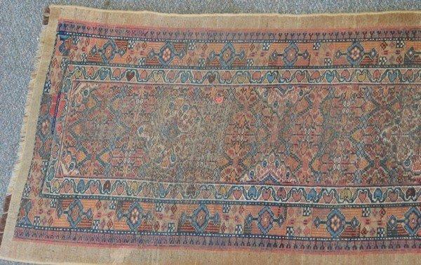 17: 2.7 x 12.0 Hamadan camel colored rug