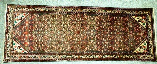 11: 3.6 x 9.7 Hamadan throw rug
