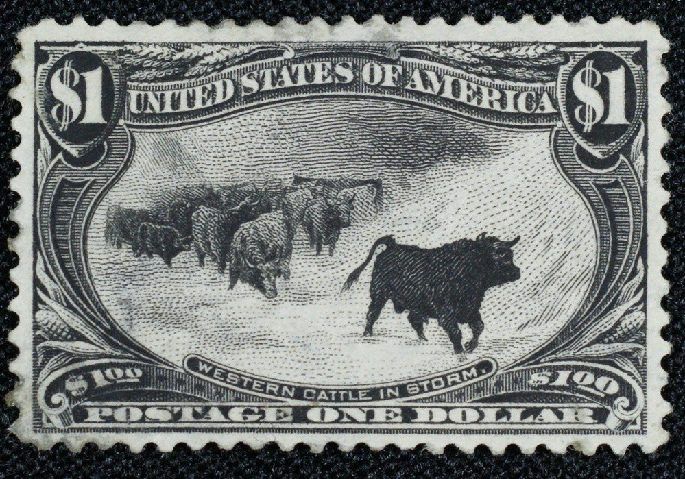 "100A: 1898 Trans-Mississippi $1 ""Western Cattle in a St"