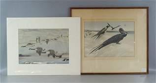 Brasher Rex Canada Geese and Man of War Bird