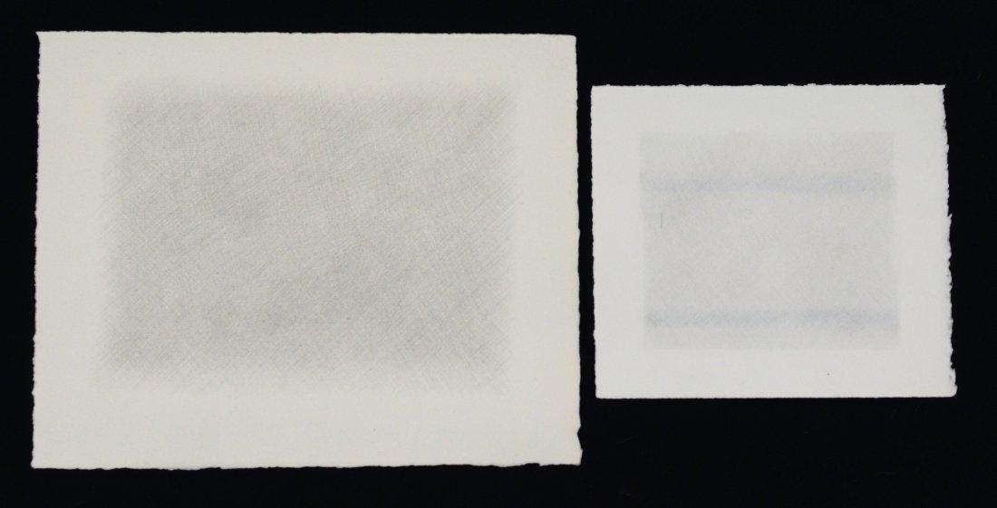 (2) Debra Salopek (American, 20th Century), graphite