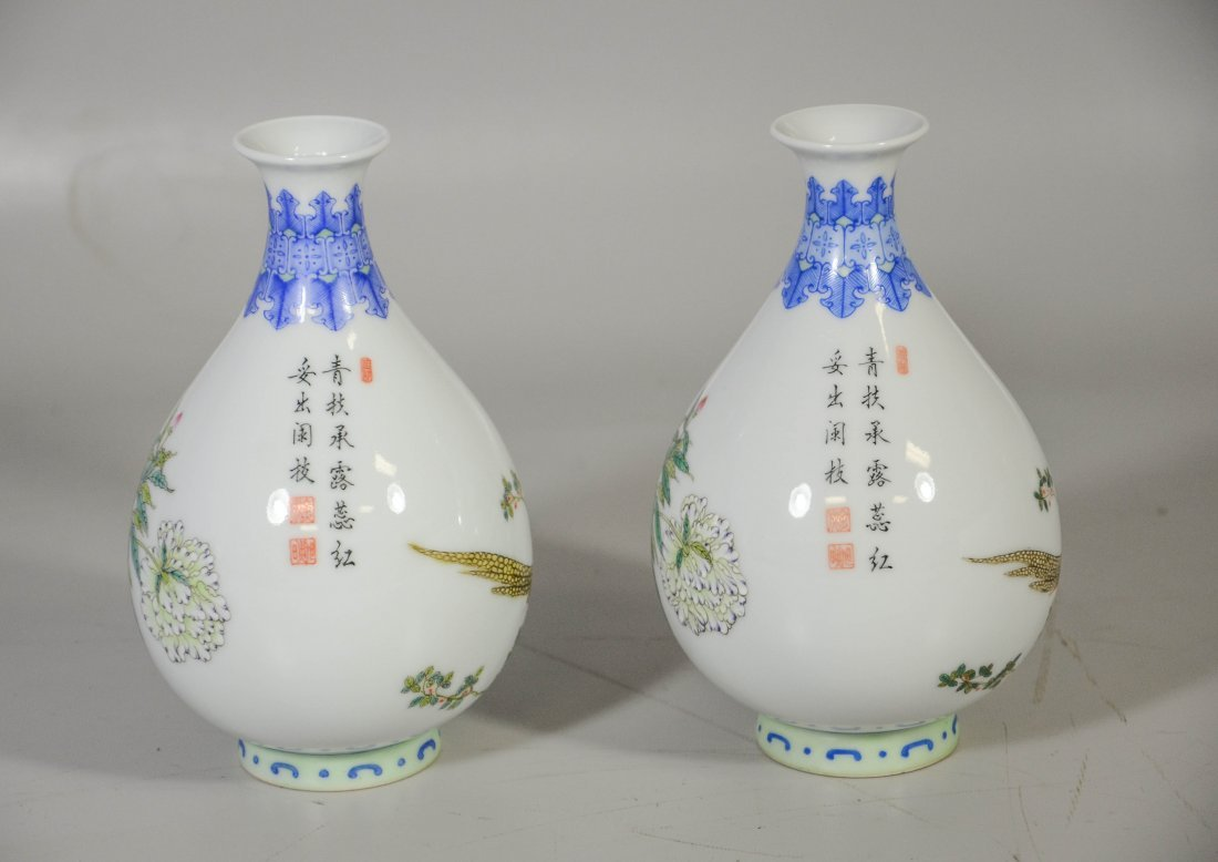Pair of Chinese porcelain vases, decorated with exotic - 4