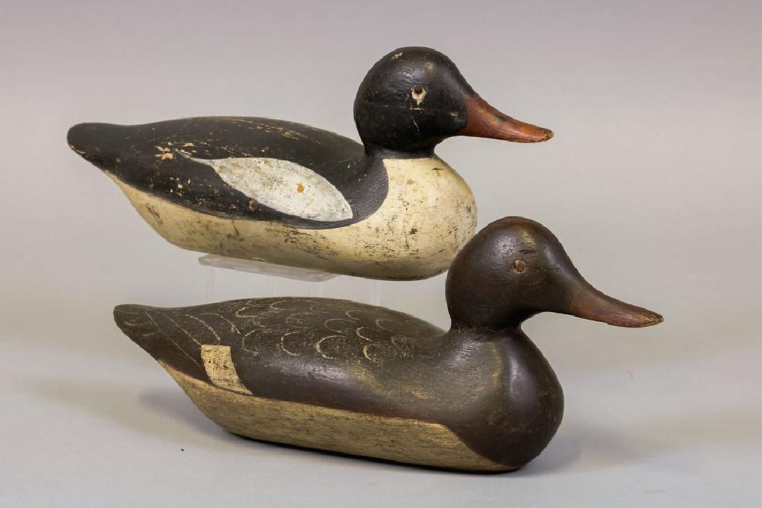 Mason Decoy Factory Pair of Merganser Duck - 3