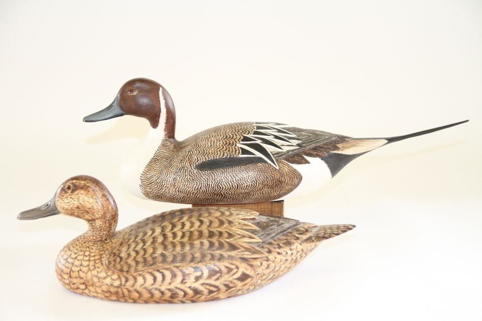 Pair of Hen and Drake Pintails by Tom Beardsley of