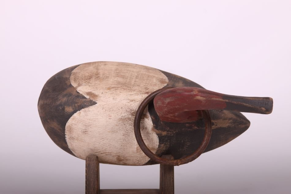 Canvasback Drake Duck Decoy by The Duscharme Family, - 5