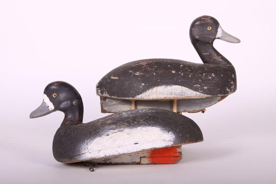 Pair of Bluebill Drake Duck Decoys by H.H. Ackerman of - 2