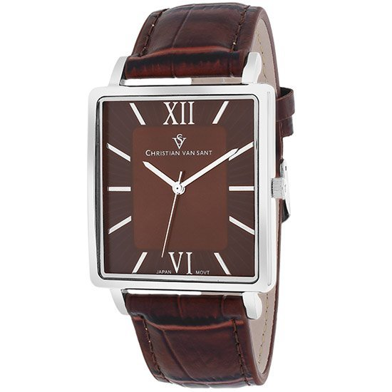 Stainless steel case, Leather strap, Brown dial, Quartz