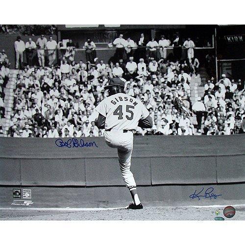 Bob Gibson Pitching Horizontal 16x20 Photo Signed by Ph