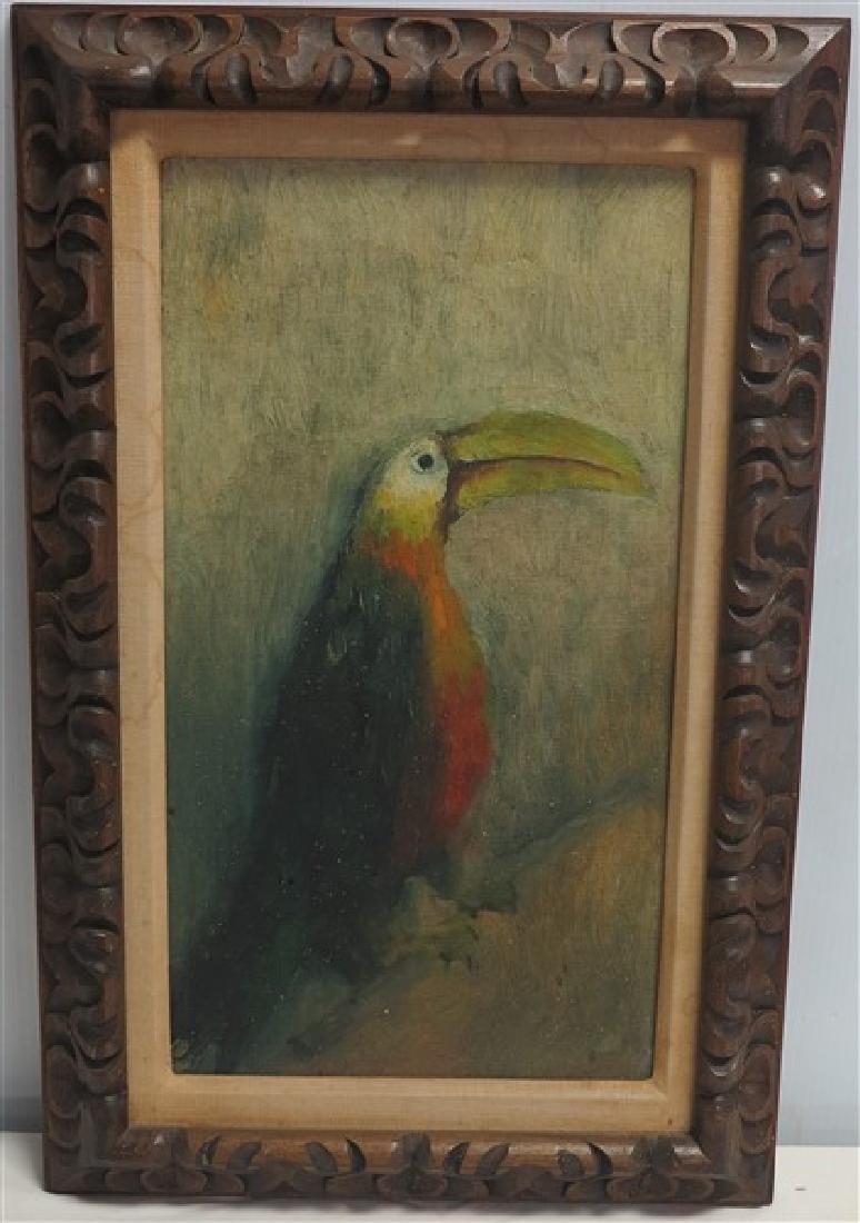 o/c- Bird of Paradise