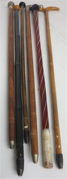 6 Walking Sticks