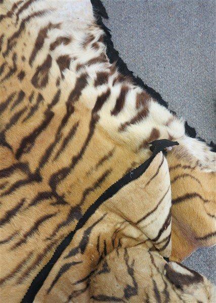 Tiger rug - 3
