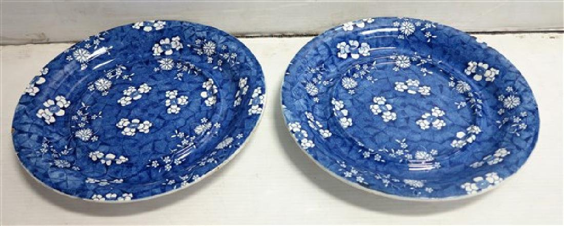 "Two 14"" Blue English Chargers"