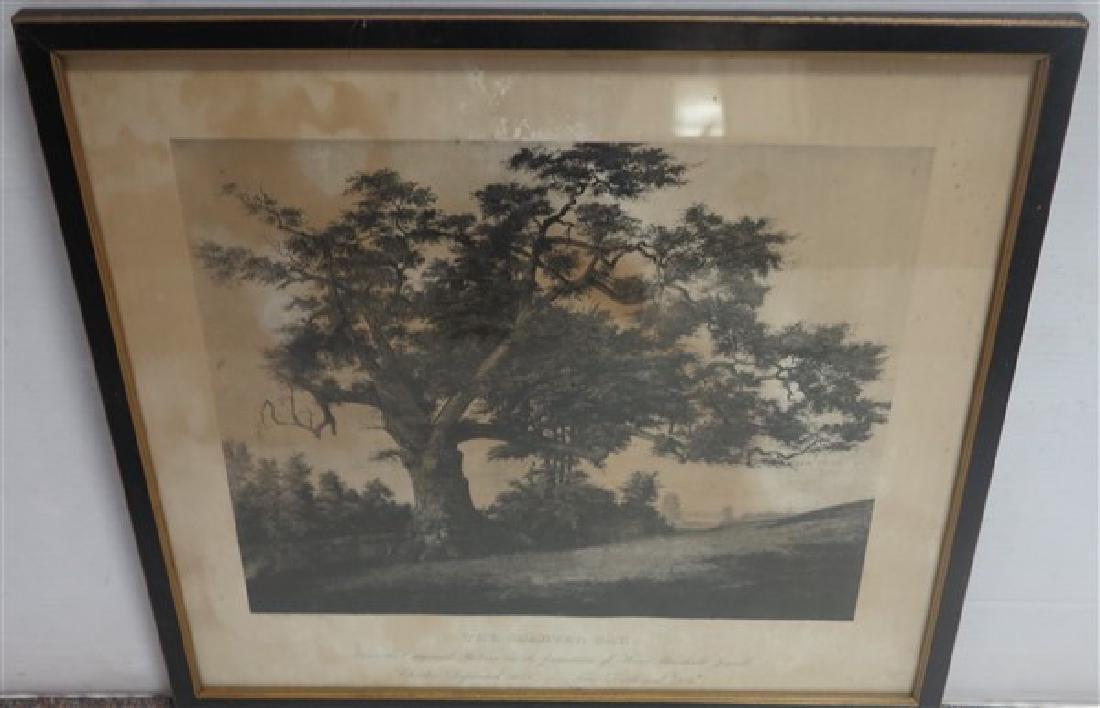 Framed Print 1855 Charter Oak