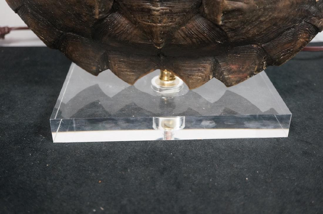 Natural Tortoise Shell Table Lamp. Natural shell - 2