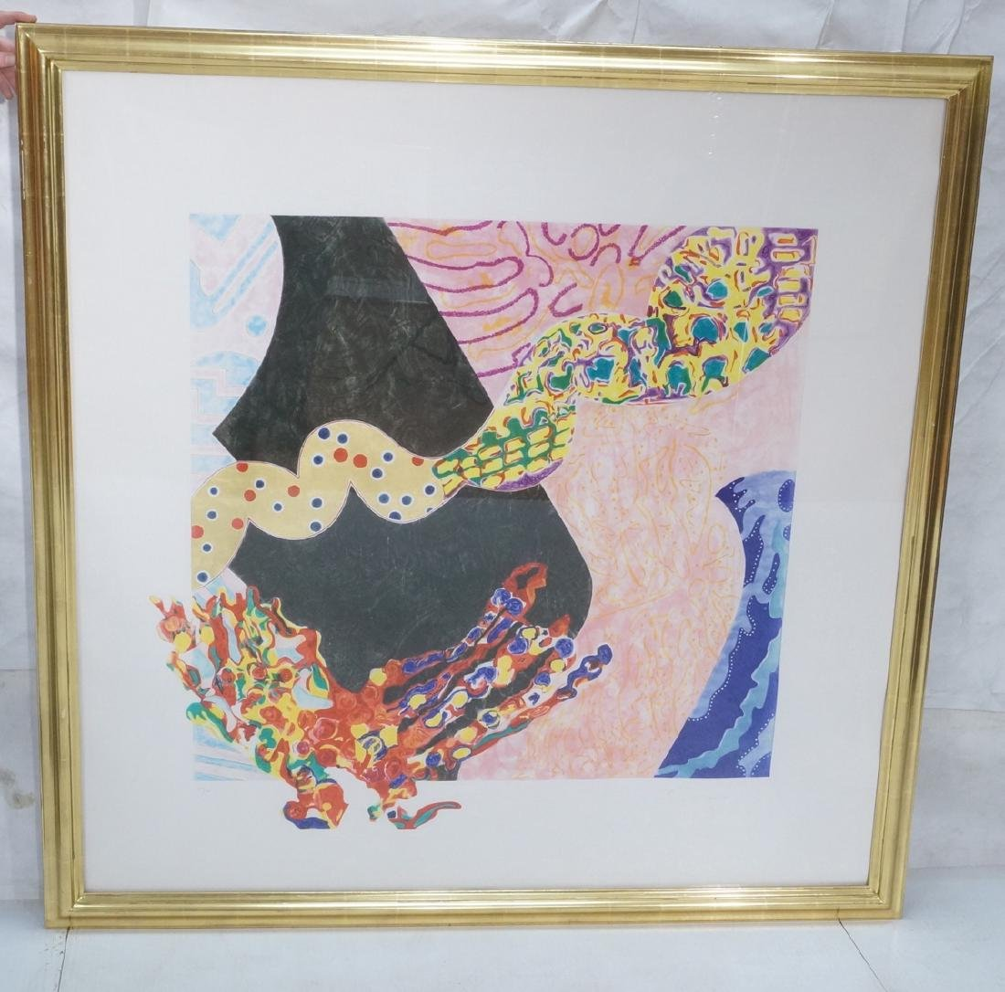 NANCY GRAVES Lg Abstract Lithograph Print 'Borbor