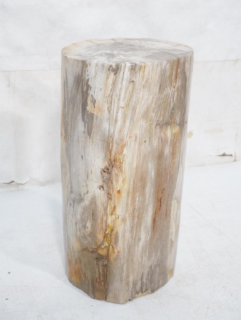 Petrified Wood Stool End Table. Natural form petr