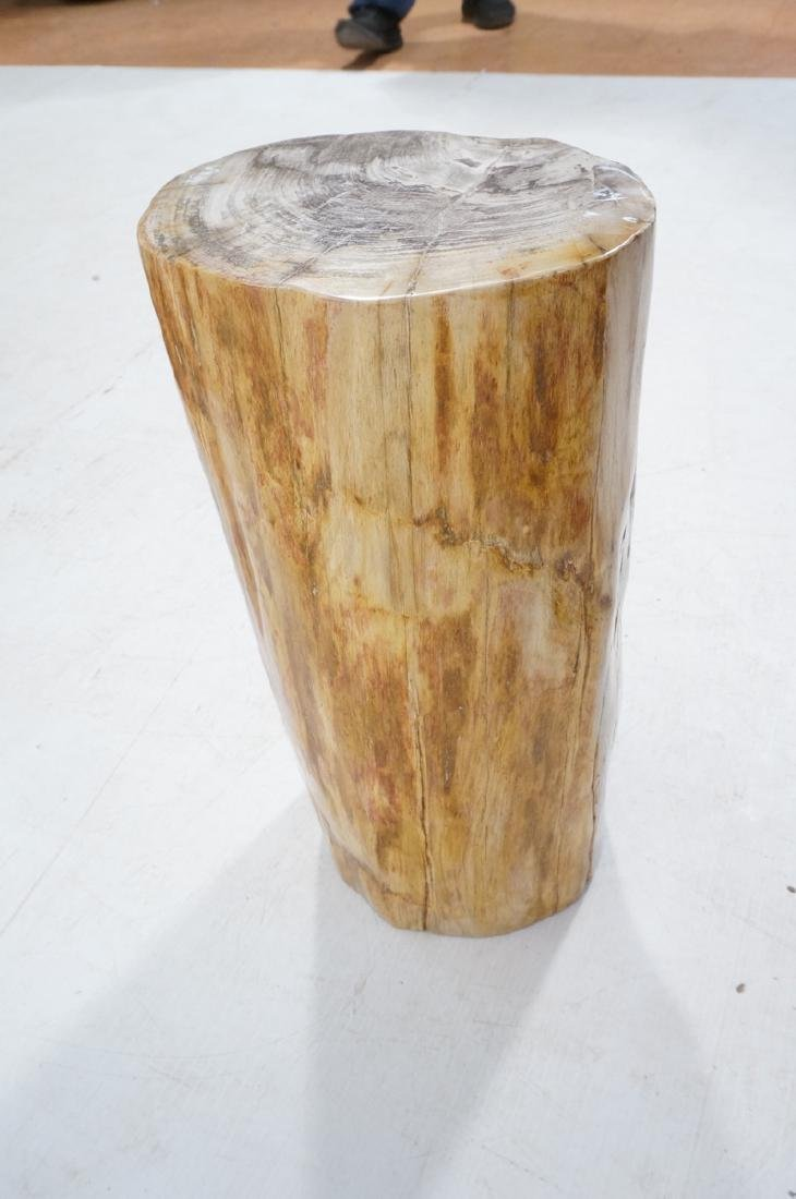 Petrified Wood Stool End Table. Natural form petr - 4