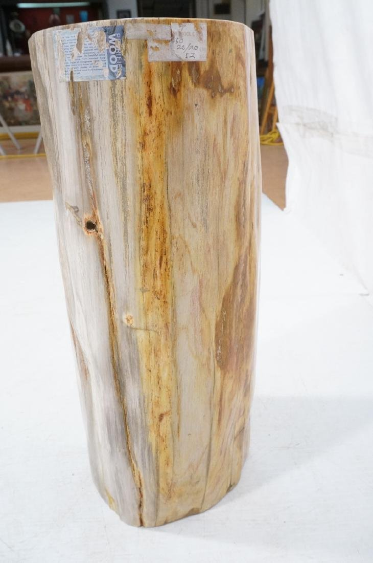 Petrified Wood Stool End Table. Natural form petr - 5