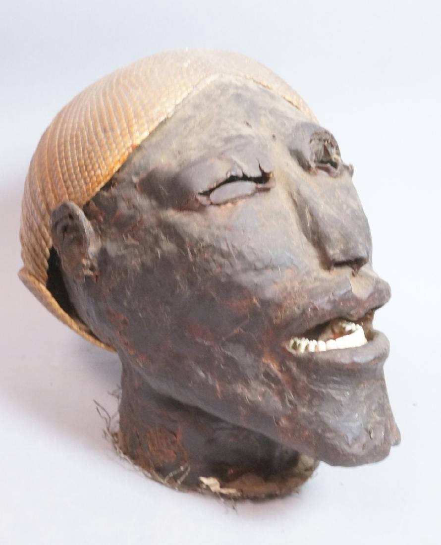 Wax Head Bust. Armadillo Shell Headdress. Sculptu