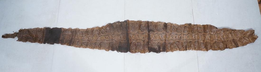 """15'7"""" Anaconda Snake Skin Hide. Genuine specimen"""
