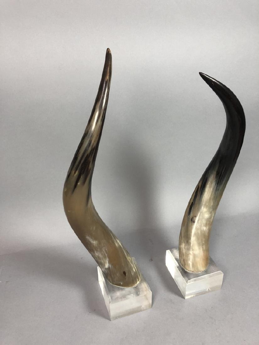 Pr. Natural Steer Horns Mounted on Lucite Base. M - 2