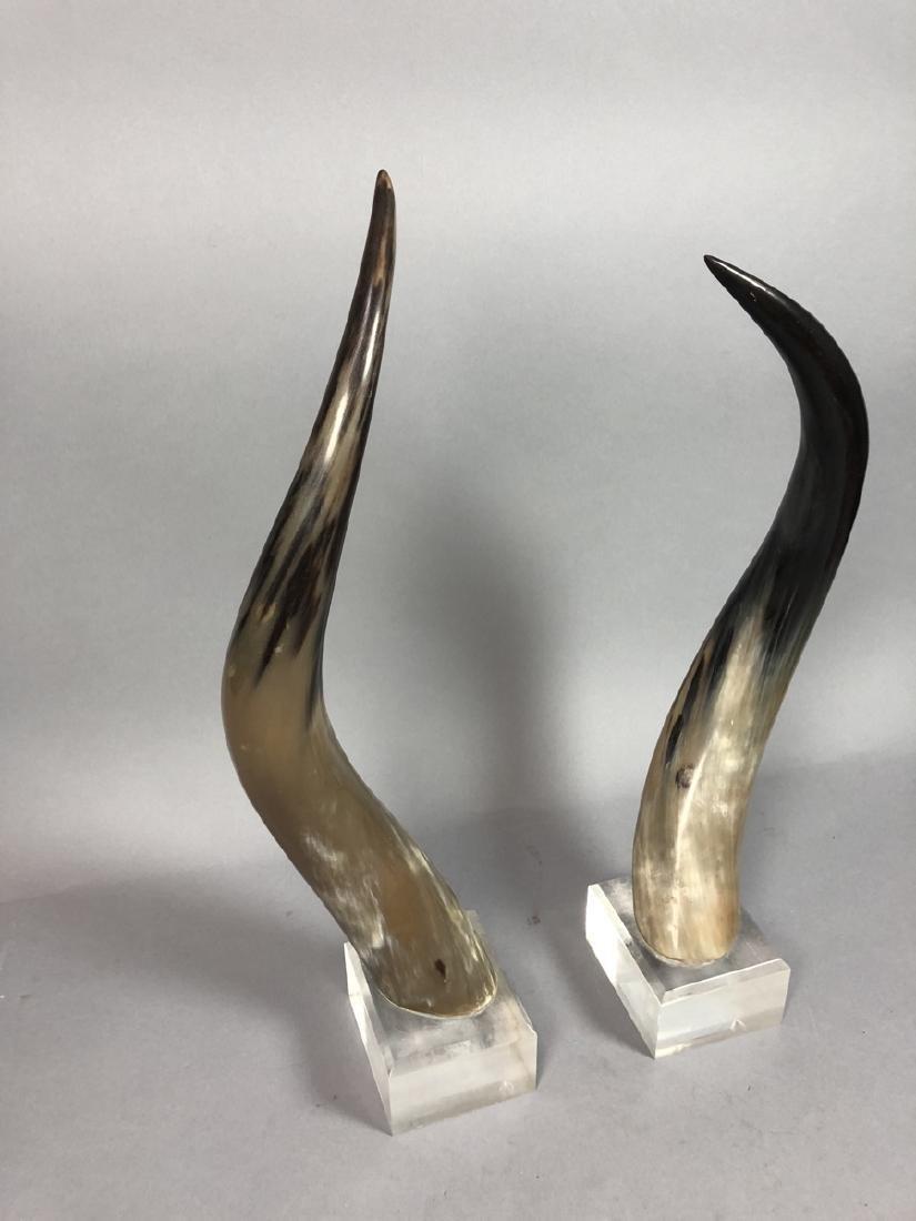 Pr. Natural Steer Horns Mounted on Lucite Base. M - 2