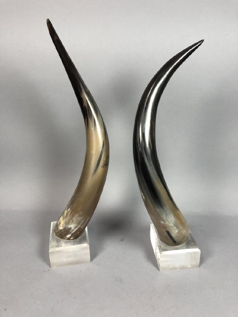 Pr. Natural Steer Horns Mounted on Lucite Base. M - 5