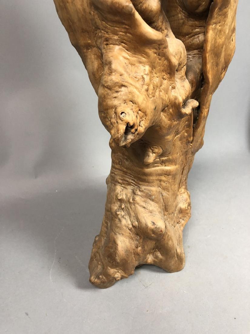 Natural Tree Burl Specimen Sculpture. Large biomo - 2