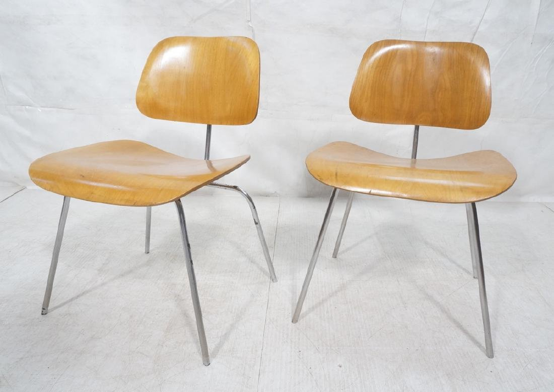 Pr HERMAN MILLER DCM Dining Chairs. Laminated woo