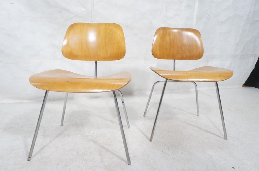 Pr HERMAN MILLER DCM Dining Chairs. Laminated woo - 2