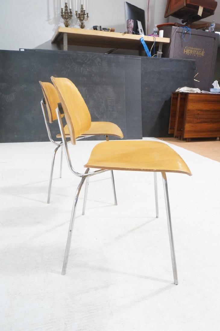 Pr HERMAN MILLER DCM Dining Chairs. Laminated woo - 3