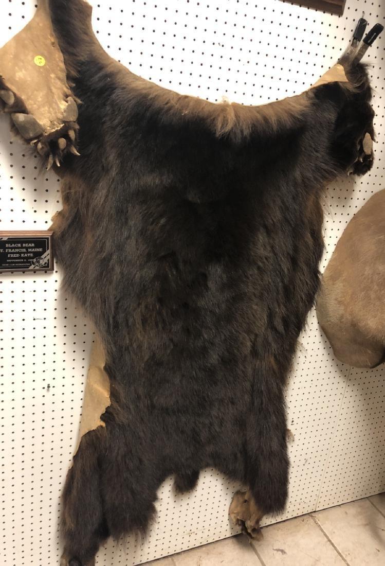 BLACK BEAR Hide Skin Trophy Rug.