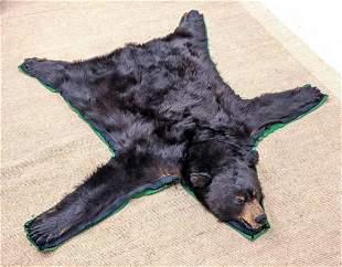 Black Bear Taxidermy Rug Mount. Full head.