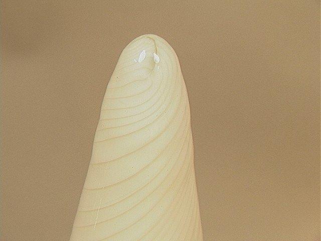 48: Murano Glass Cone Shaped Table Lamp.Vetri Murano. - 4