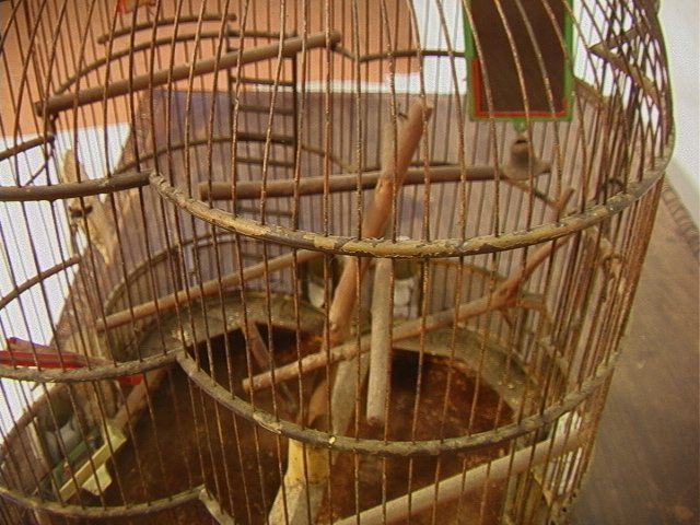 504: Antique Wire Metal Bird Cage. Fancy Decorative Ca - 5