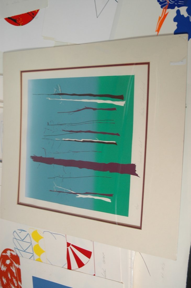 Large Portfolio of SHEILA ROSENFIELD Screen Print - 6