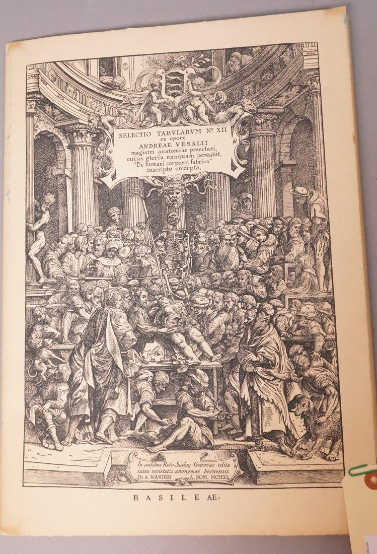 Anatomical Print Portfolio - ANDREAE VESALII Sele