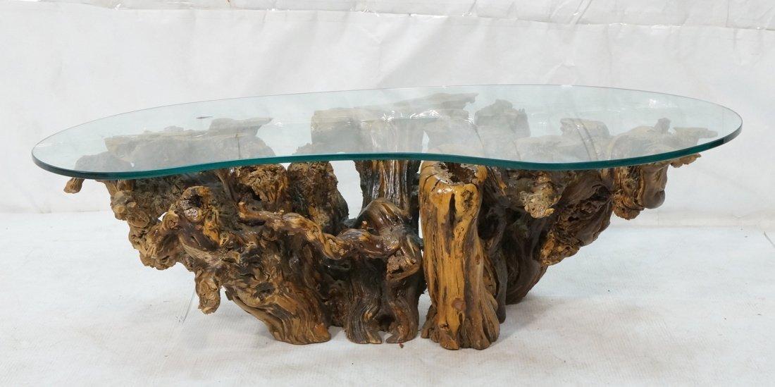 Organic Freeform Wood Burl Base Coffee Table. Boo