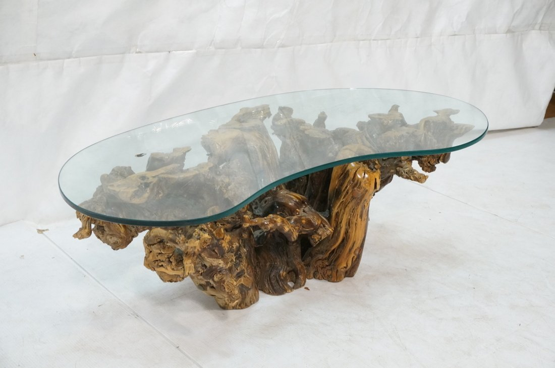 Organic Freeform Wood Burl Base Coffee Table. Boo - 2