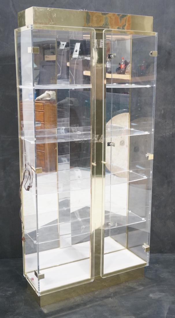 Decorator Lucite Brass 2 Door Display Cabinet. Lu