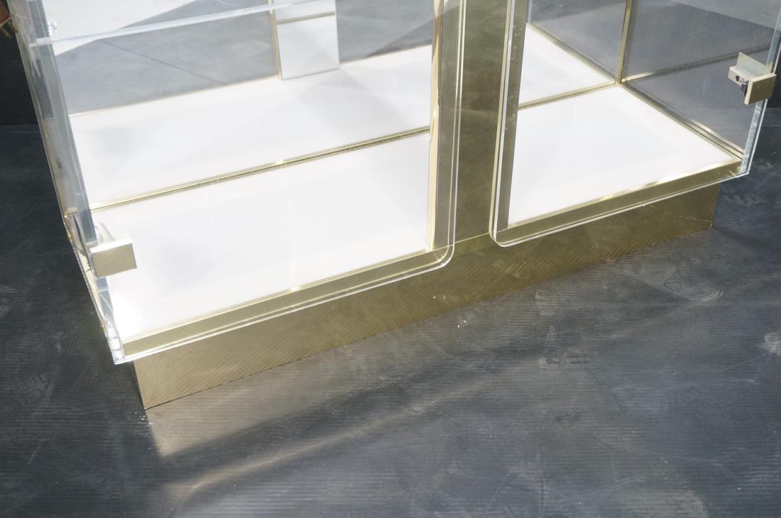 Decorator Lucite Brass 2 Door Display Cabinet. Lu - 4