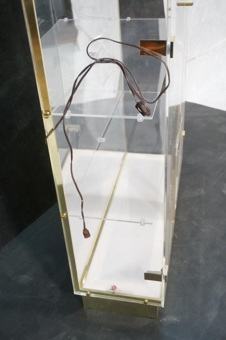 Decorator Lucite Brass 2 Door Display Cabinet. Lu - 5