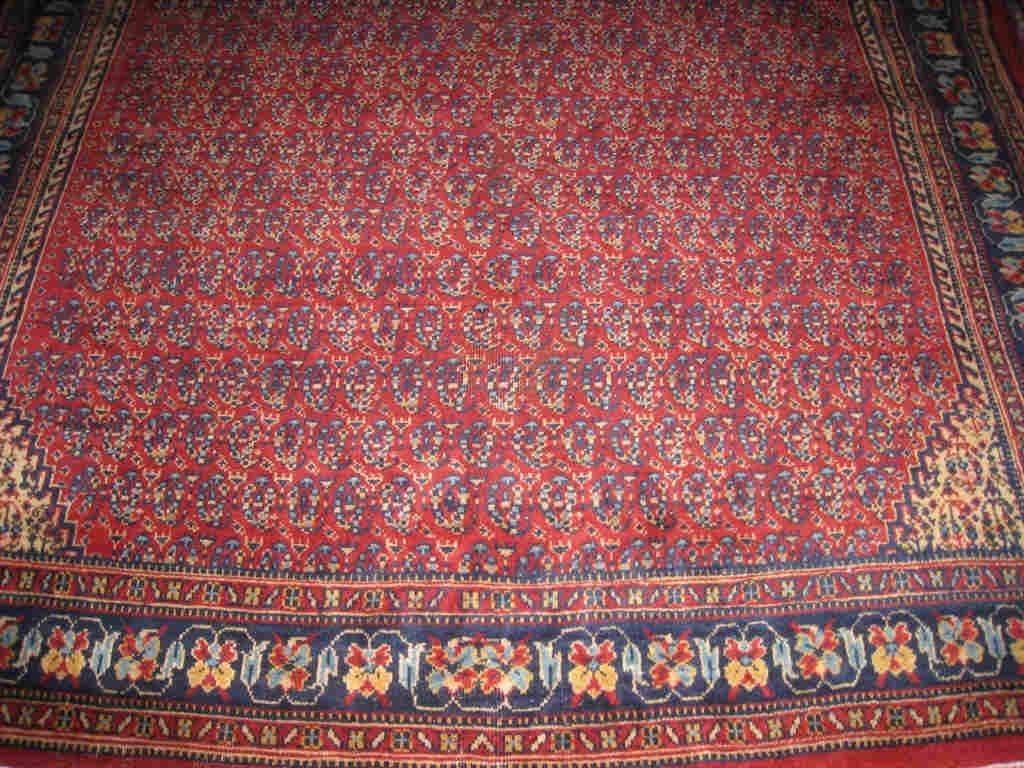 Carpet / Tapis